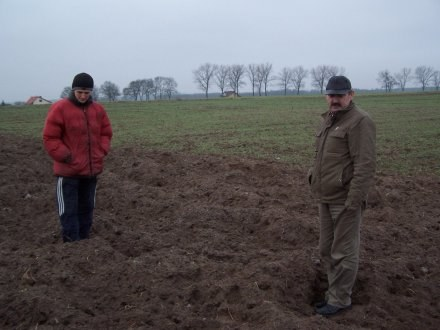 Tak wygląda pole Krzysztofa Ciążyńskiego (na zdjęciu z synem Remigiuszem) / fot. A. Majszak /Tygodnik Pałuki