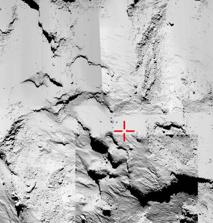 Tak wygląda powierzchnia komety /AFP