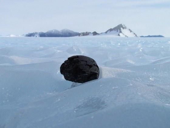 Takie skarby można znaleźć tylko na Antarktydzie /fot. Katherine Joy /materiały prasowe