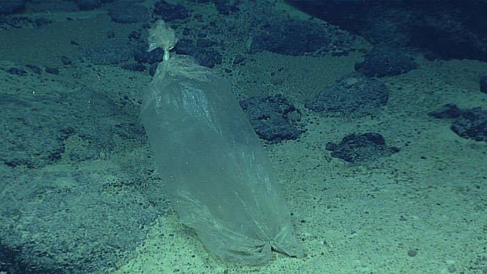 Takie śmieci są obecne nawet w największych głębinach /Fot. NOAA /materiały prasowe