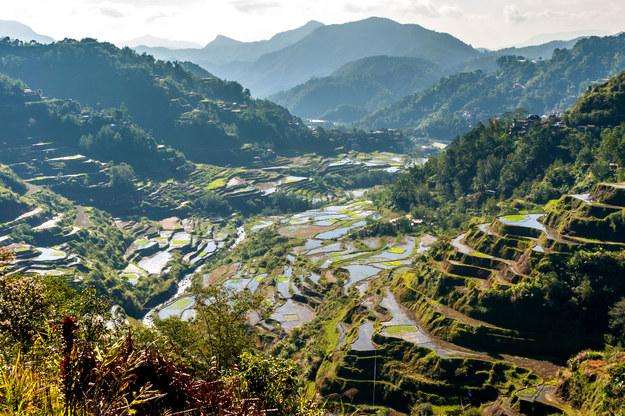 Tarasy ryżowe na Filipinach /123/RF PICSEL