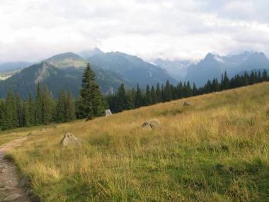 Tatry są njwiększym bogactwem Zakopanego /RMF