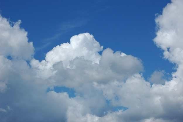 """Technologia """"chmury"""" to przyszłość walki z wirusami Fot. Uku Nurk /stock.xchng"""