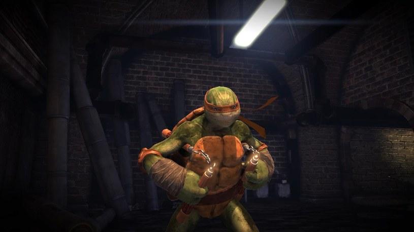 Teenage Mutant Ninja Turtles /materiały prasowe