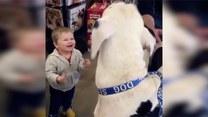 Ten chłopczyk postanowił zaprzyjaźnić się z psem