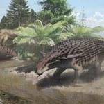 Ten dinozaur miał pancerz, a jednak ukrywał się w cieniu