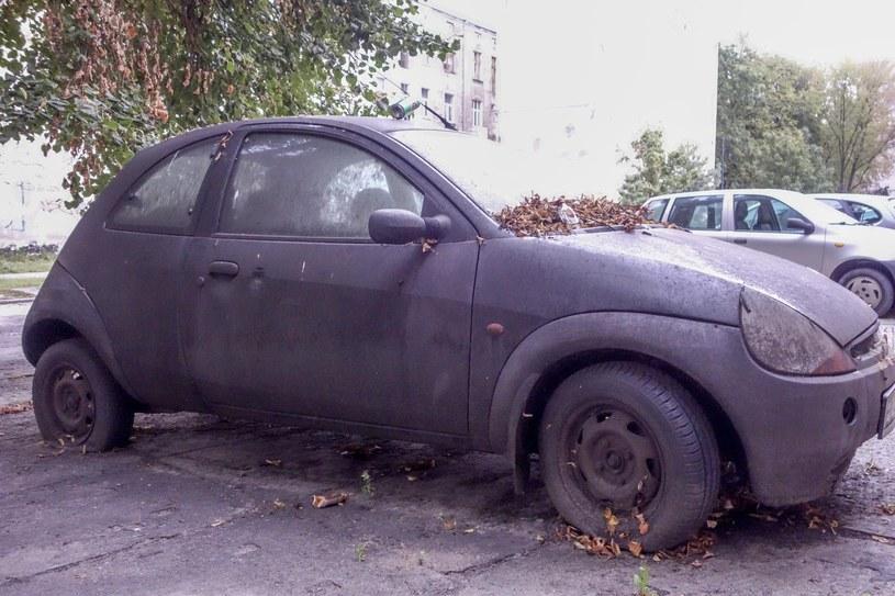 Ten Ford Ka wg CEPiK-u to auto w ciągłym użytkowaniu /Piotr Kamionka /Reporter