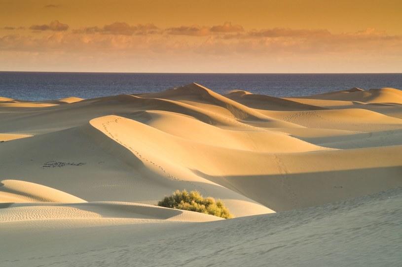 Ten piasek przywieziono z Sahary /123RF/PICSEL