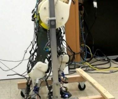 Ten robot jest nadzieją dla sparaliżowanych