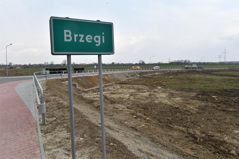 Teren pod Campus Misericordiae w Brzegach pod Wieliczką /Jacek Bednarczyk /PAP
