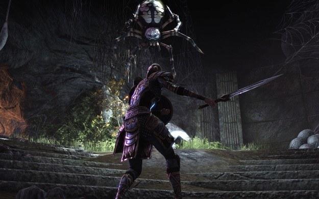 The Elder Scrolls Online /materiały prasowe