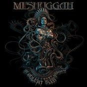 Meshuggah: -The Violent Sleep Of Reason