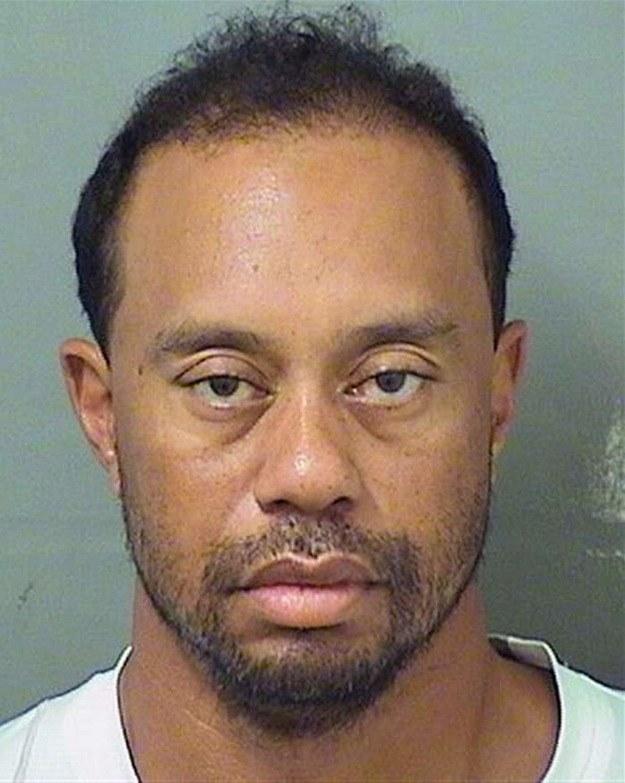 Tiger Woods po zatrzymaniu przez policję /