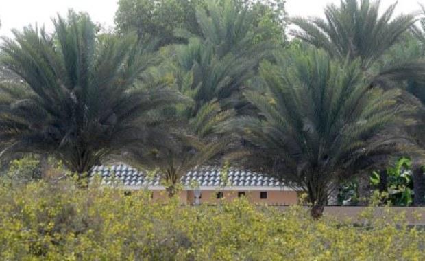 """Tim """"Avicii"""" Bergling zmarł na terenie posiadłości krewnego sułtana Omanu"""