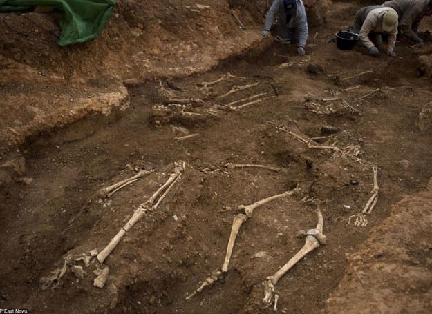 To jedno najciekawszych cmentarzysk kultury łużyckiej na Dolnym Śląsku i jedno z najbogatszych z terenu Polski/ Zdjęcie ilustracyjne /AFP /East News
