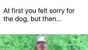 To jest ulubiona zabawa tego psa!
