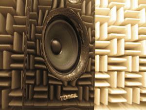 Tonsil wprowadza do sprzedaży swoje pierwsze  kolumny dla audiofilów