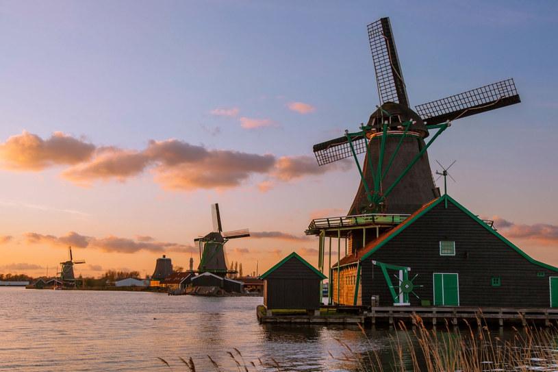 Tradycyjne holenderskie wiatraki w pobliżu Amsterdamu /©123RF/PICSEL