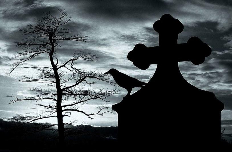 Tradycyjne nekrologi odchodzą do lamusa /©123RF/PICSEL
