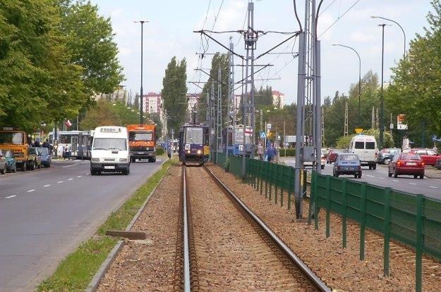 Tramwaje i autobusy objęte są specjalnymi prawami /INTERIA.PL