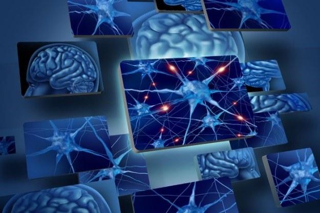 Transfer świadomości już wkrótce będzie możliwy? /©123RF/PICSEL