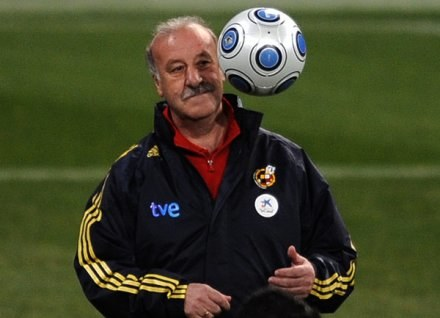 Trener reprezentacji Hiszpanii Vicente del Bosque /AFP