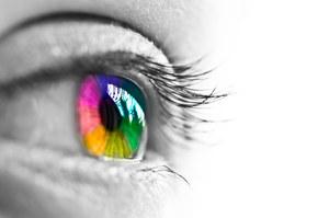 Trening plamki ślepej podstawą do przywracania wzroku?