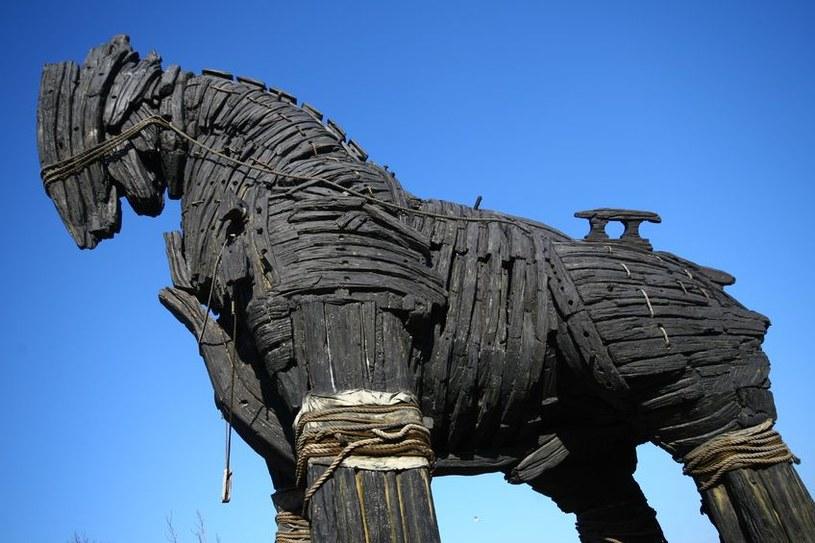 Trojan.PWS.Ibank.752 należy do znanej rodziny trojanów bankowych /©123RF/PICSEL
