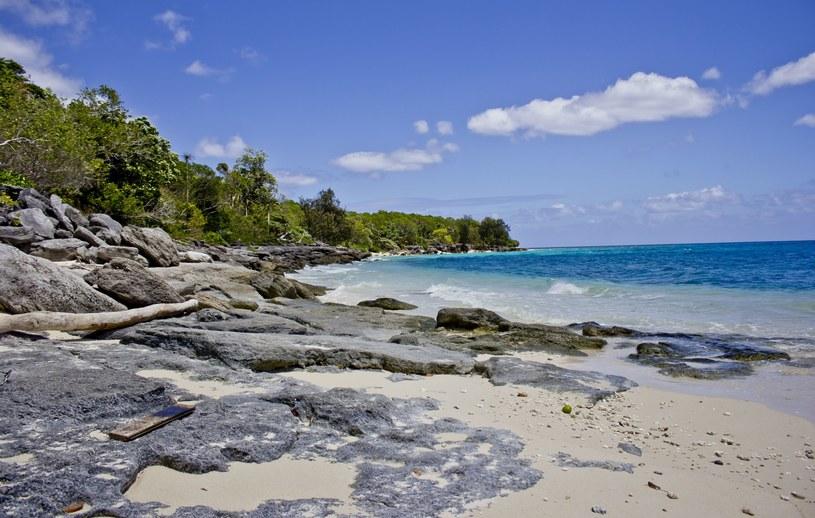 Tropikalna plaża Vanatu /123RF/PICSEL