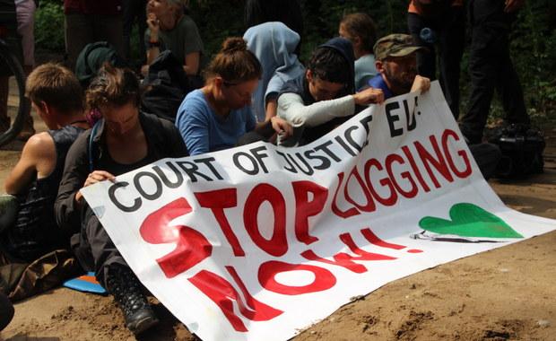 Trybunał Sprawiedliwości poprosił KE o dowody ws. złamania zakazu wycinki przez Polskę