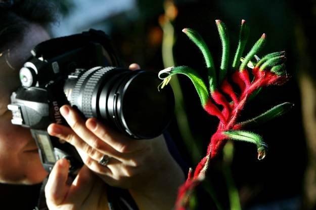 Tryby kreatywne w aparatach fotograficznych - często zapominamy o nich. Warto z nich korzystać /AFP