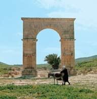 Tunezja, ruiny rzymskie, Pheradi Maius obok Hammamet /Encyklopedia Internautica