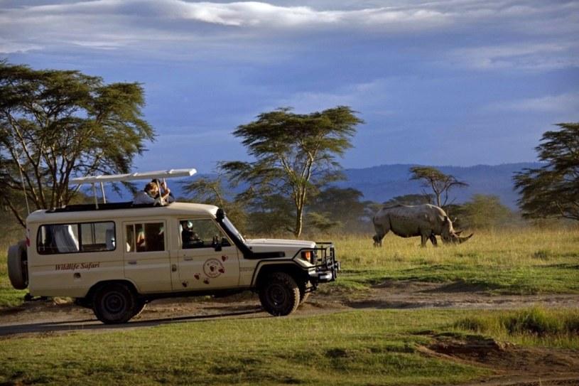 Turyści w Parku Narodowym Jeziora Nakuru /East News