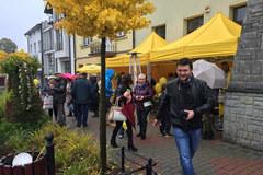 """Twoje Miasto w Faktach RMF FM: Piwniczna-Zdrój - """"Królewskie wolne miasto"""""""