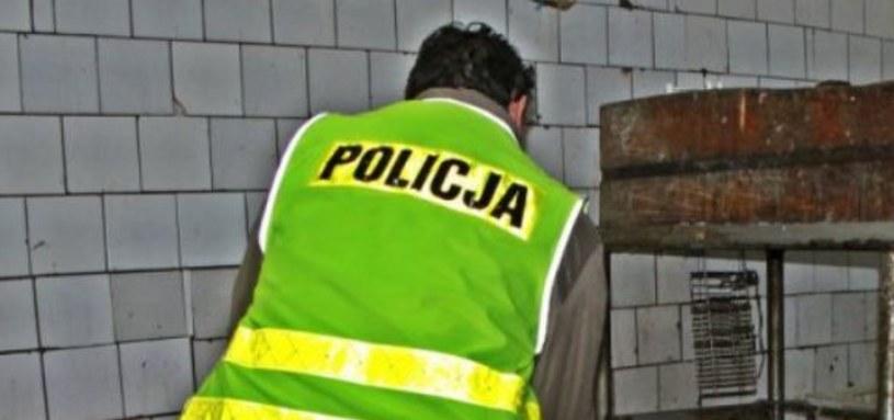 Ubojnia działała na terenie prywatnej posesji /Policja