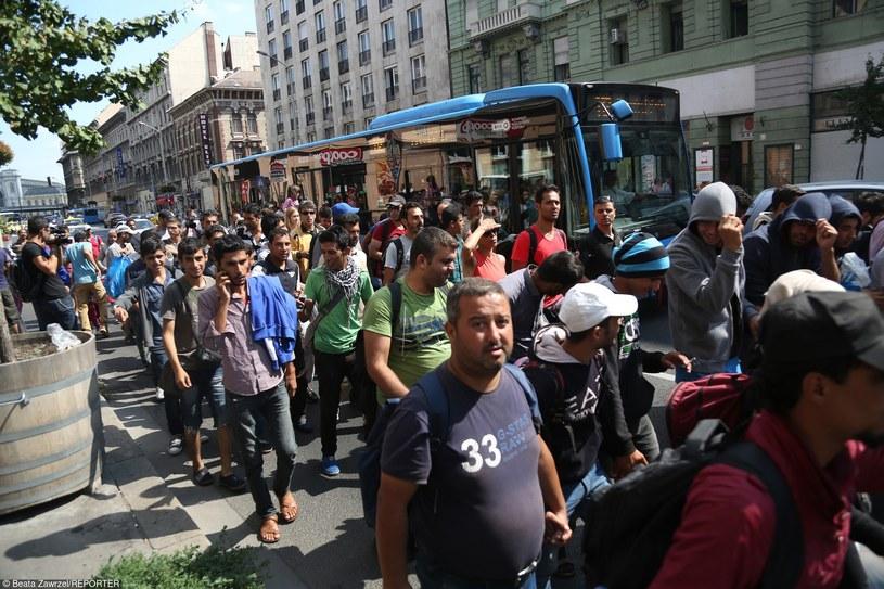 Uchodźcy podczas wędrówki do Niemiec /Beata Zawrzel/REPORTER /East News