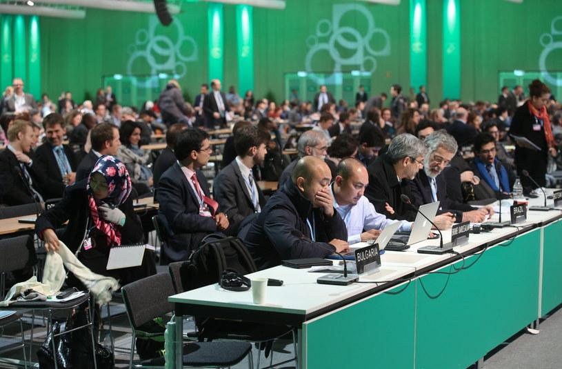 Uczestnicy konferencji klimatycznej ONZ COP19/CMP9 w Warszawie /Rafał Guz /PAP