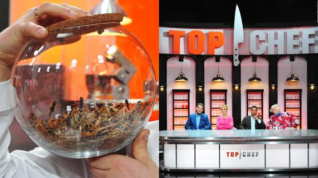 """Uczestników """"Top Chef"""" czekają ekstremalne przeżycia. /Polsat"""