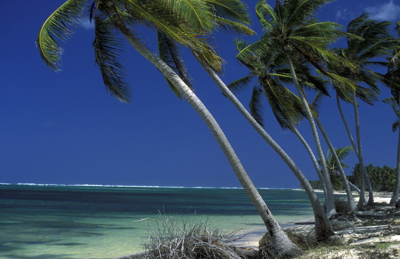 Uroki samańskiej plaży /©123RF/PICSEL
