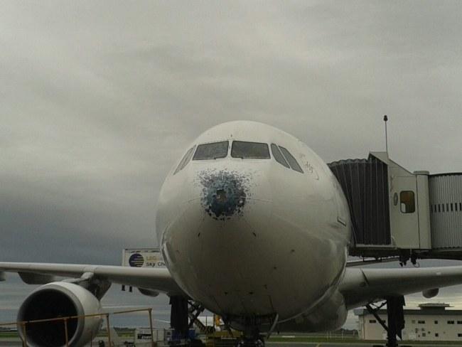 Uszkodzony samolot /Ricardo Cirelli / APTA / HANDOUT /PAP/EPA