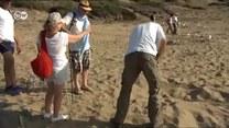 Uwaga na żółwie ukryte w piasku