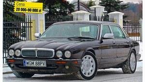 Używany Jaguar XJ8 (1994-2003) - rasowy kociak