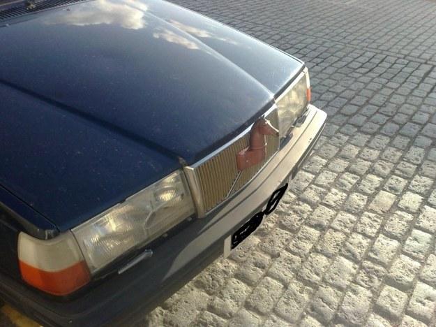 Volvo mustang