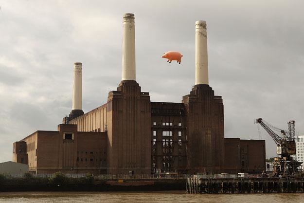 "W 2011 roku świnia z okładki ""Animals"" znów pofrunęła nad elektrownią Battersea fot. Oli Scarff /Getty Images/Flash Press Media"