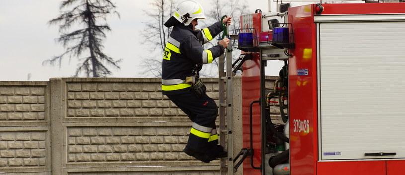 W akcji gaśniczej uczestniczyły trzy zastępy straży pożarnej /RMF FM
