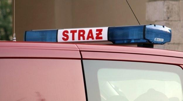 W akcji ratunkowej z użyciem specjalistycznego sprzętu brali udział strażacy /Maciej Nycz /RMF FM