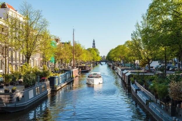 W Amsterdamie z publicznego internetu można korzystać za darmo /©123RF/PICSEL