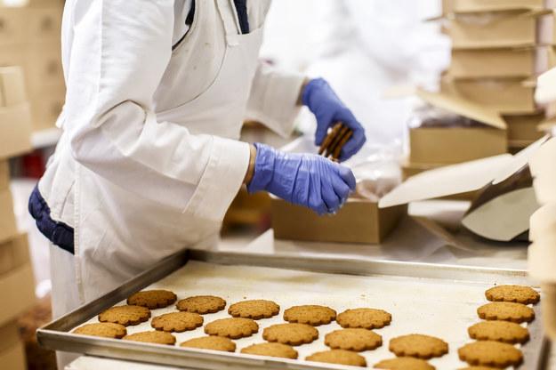 W brytyjskich zakładach przetwarzających żywność pracuje wielu Polaków /123RF/PICSEL