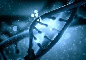 W Chinach otworzono pierwszą fabrykę klonów