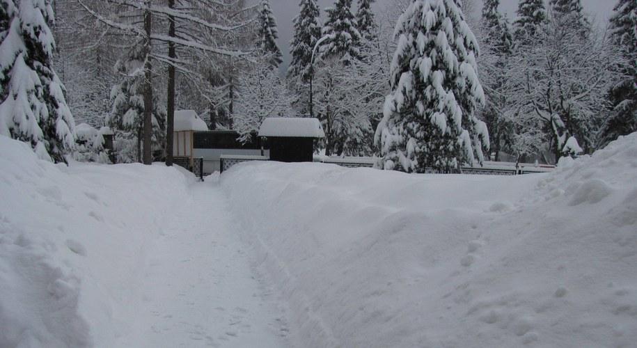 W ciągu doby w Tatrach spadło prawie pół metra świeżego śniegu /Maciej Pałahicki /RMF FM